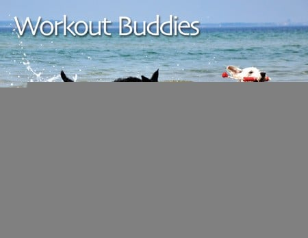Workout Tips and Secrets of Fitness Professionals