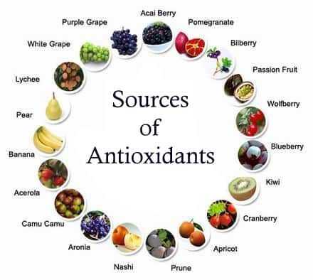 What Antioxidants Are and Why They Are Important